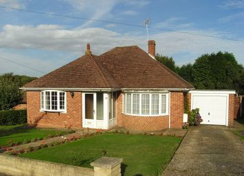 Thumbnail 2 bedroom bungalow to rent in Chestnut Avenue, Bedhampton, Havant