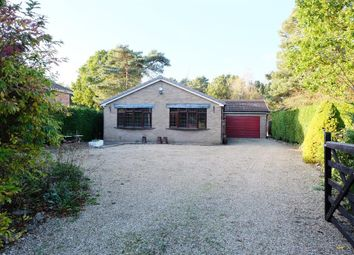 Thumbnail 3 bed detached bungalow to rent in Horncastle Road, Woodhall Spa