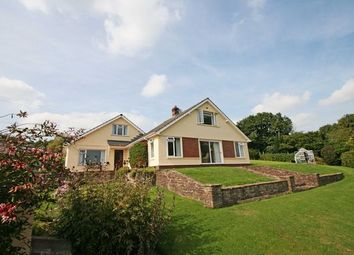 Thumbnail 4 bed detached bungalow for sale in High Street, Bampton, Tiverton