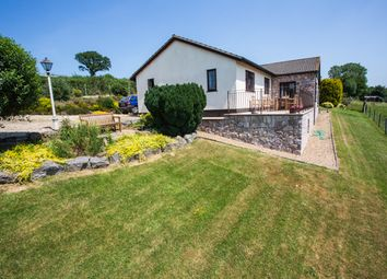 Thumbnail 3 bed bungalow for sale in Tedburn St. Mary, Exeter