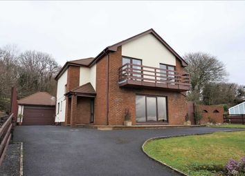 Thumbnail 4 bed detached house for sale in Amman View, Gorslas, Llanelli