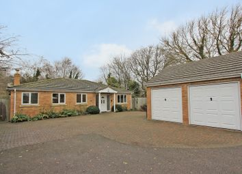 Thumbnail 4 bed detached bungalow for sale in Way Lane, Waterbeach, Cambridge