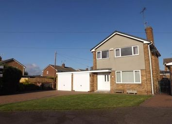 Thumbnail 3 bed detached house to rent in Tewkesbury Avenue, Mansfield Woodhouse, Mansfield