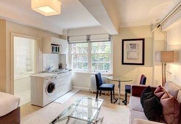 Thumbnail Studio to rent in Pelham Court, London
