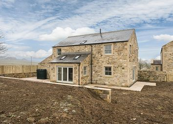Thumbnail 4 bedroom detached house for sale in The Cart Shed, Colwell, Hexham, Northumberland