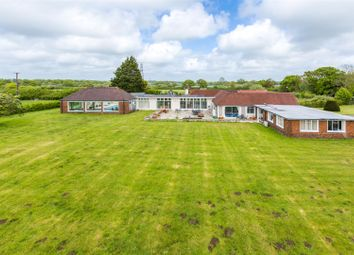 Thumbnail 4 bed detached bungalow for sale in Lower Wick Street, Berwick, Polegate