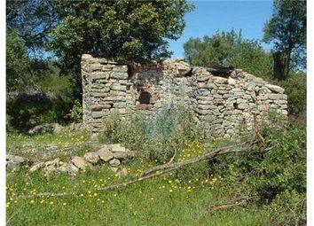 Thumbnail Land for sale in Charneca Do Peral - Peral, São Brás De Alportel (Parish), São Brás De Alportel, East Algarve, Portugal