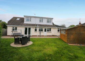 Thumbnail 4 bed detached bungalow for sale in Meadowcroft Drive, Kingsteignton, Newton Abbot