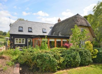 Thumbnail 4 bed cottage for sale in Stour Row, Shaftesbury