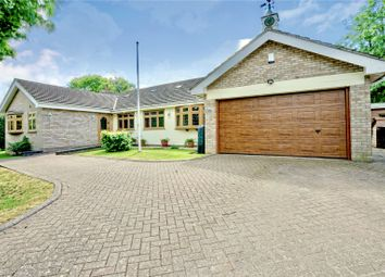 Thumbnail 4 bed detached bungalow for sale in Green End, Little Staughton, Bedford, Bedfordshire