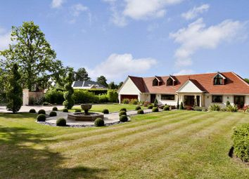 Thumbnail 5 bedroom property for sale in Moles Hill, Oxshott, Surrey