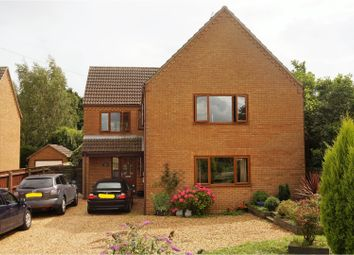 Thumbnail 4 bed detached house for sale in Dowsdale Bank, Shepeau Stow, Nr Spalding