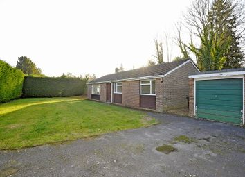 Thumbnail 3 bed bungalow to rent in Enton, Godalming