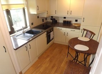 Thumbnail 1 bed flat to rent in Burns Road, Crookesmoor