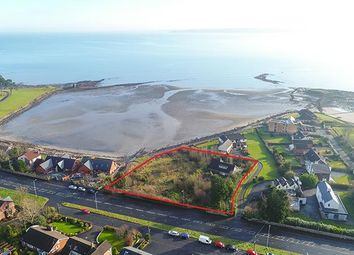 Thumbnail Land for sale in 103-103A Shore Road, Greenisland, County Antrim