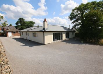 4 bed detached bungalow for sale in Hall Lane, Longton, Preston PR4