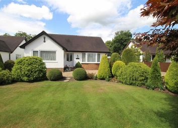 Thumbnail 2 bed detached bungalow for sale in Whittingham Lane, Whittingham, Preston