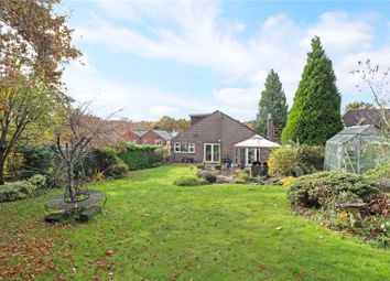 Thumbnail 4 bedroom detached house for sale in Conford, Liphook, Hampshire