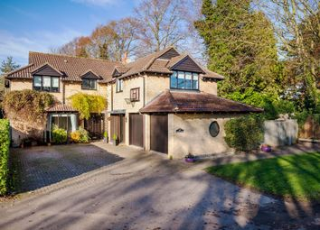 Thumbnail 5 bedroom detached house for sale in Fen End, Over, Cambridge