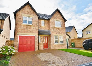 Thumbnail 4 bedroom detached house for sale in Whins Close, High Harrington, Workington