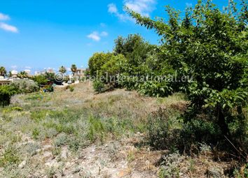 Thumbnail Land for sale in Tala, Cyprus