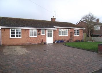 Thumbnail 3 bed bungalow to rent in Plough Road, Tibberton, Droitwich