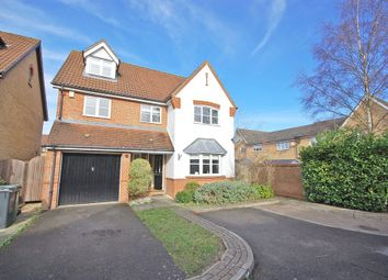Thumbnail 5 bed detached house to rent in Timbers Close, Great Notley, Braintree