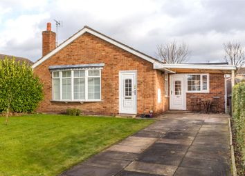 Thumbnail 2 bed detached bungalow to rent in The Hawthorns, Riccall, York