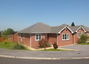 Thumbnail 2 bed detached bungalow to rent in The Croft, Shirebrook
