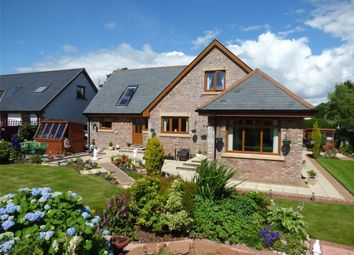 Thumbnail 4 bed detached house for sale in The Homestead, Kirtle Bank, Rigg, Gretna