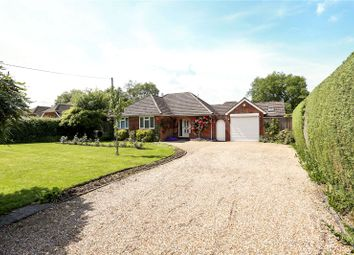 Thumbnail 3 bed detached bungalow for sale in Winchester Road, Four Marks, Alton, Hampshire