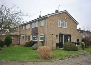 Thumbnail 4 bed semi-detached house to rent in St. Michaels Place, Canterbury