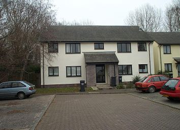 Thumbnail 2 bed flat to rent in Speedwell Close, Barnstaple