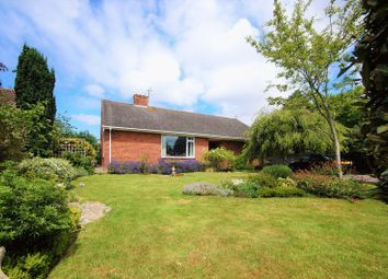 Thumbnail 2 bed detached bungalow for sale in North Road, Wookey, Wells