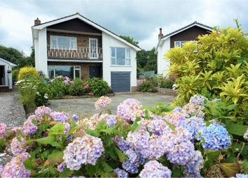 Thumbnail 4 bed detached house for sale in Pont Y Bedol, Llanrhaeadr