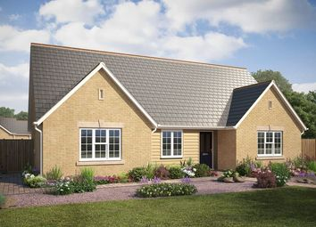 Thumbnail 4 bed detached bungalow for sale in Main Street, Little Thetford, Ely