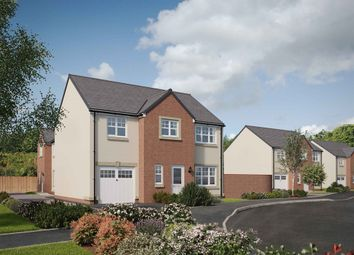 "Thumbnail 5 bed detached house for sale in ""The Carradale"" at Shillingworth Place, Bridge Of Weir"