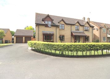 Thumbnail 4 bed detached house for sale in Tudor Place, Deeping St. James, Peterborough