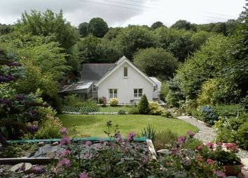Thumbnail 3 bed detached house for sale in St. Dogmaels, Cardigan