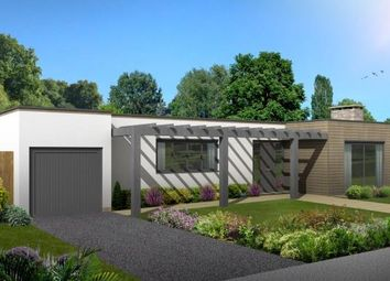 Thumbnail 2 bed bungalow for sale in The Drive, Ifold, Billingshurst