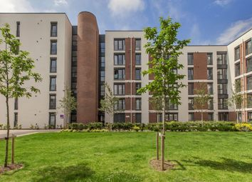 Thumbnail 2 bed flat for sale in Arneil Place, Edinburgh