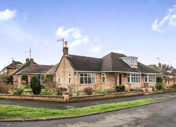Thumbnail 3 bed bungalow for sale in Toll House Road, Orton Longueville, Peterborough