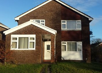 Thumbnail 4 bed detached house to rent in Monmouth Place, Ynysforgan, Swansea