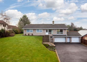 Thumbnail 4 bed detached bungalow for sale in Windmill Hill, Exning, Newmarket