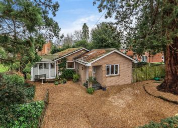 Thumbnail 3 bed bungalow for sale in Frog Hall Drive, Wokingham, Berkshire