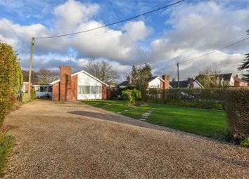 Thumbnail 3 bed detached bungalow for sale in The Street, Little Totham, Maldon, Essex