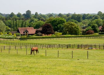 Thumbnail Property for sale in Suffield Lane, Puttenham, Guildford, Surrey