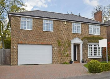 Thumbnail 4 bed detached house to rent in Churchill Drive, Weybridge
