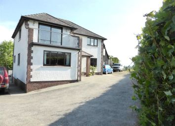 Thumbnail 4 bed detached house for sale in Llanwrda