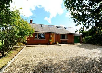 Thumbnail 3 bed detached house for sale in Craigarusky Road, Killinchy, Newtownards